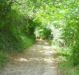 chemin Aquaria
