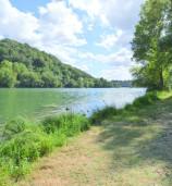 vue de bords de Saône, sur le chemin des castors