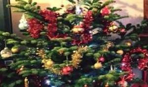 sapin de Noël 300/200