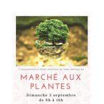 Marché aux Plantes 2017