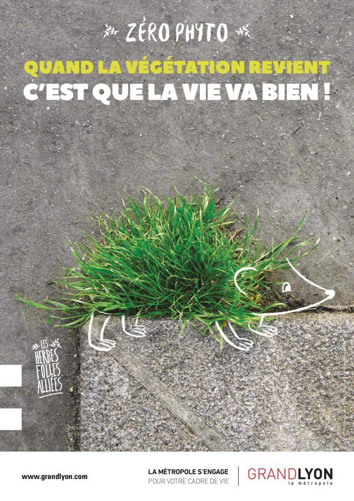 Campagne zéro phyto : hérisson