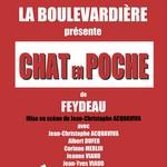 Boulevardière : Chat en Poche