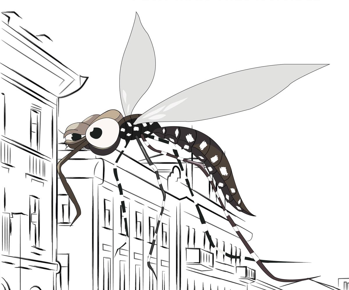 moustique Métropole de Lyon